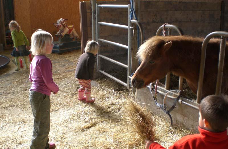 Fickfreude auf dem Bauernhof
